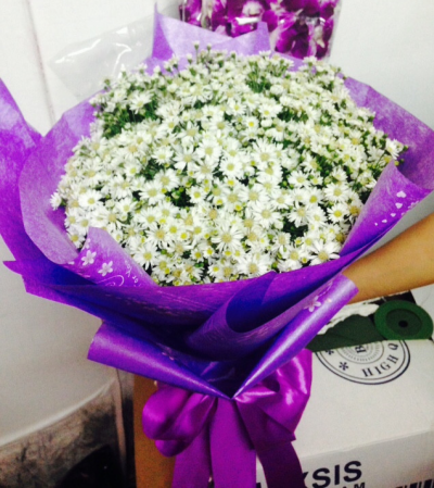 Bó hoa cúc họa mi - HT382