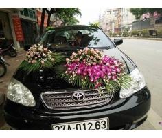 Trọn gói hoa cưới - HT190