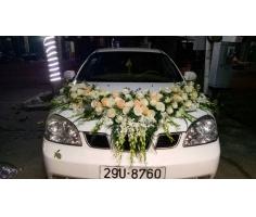 Xe hoa đẹp - HT366