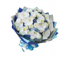 Bó hoa lan - HT273