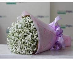 Bó hoa baby - HT56