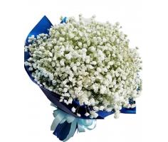 Bó hoa baby - HT352