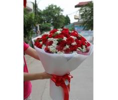 Hoa tình yêu - HT57