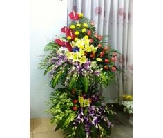 Hoa khai trương có hoa lan - HT51