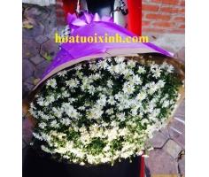 Bó hoa thạch thảo - HT356