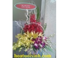 Giỏ hoa chúc mừng - HT17