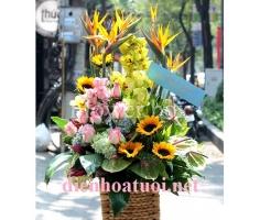 Lẵng hoa có thiên điểu - HT176
