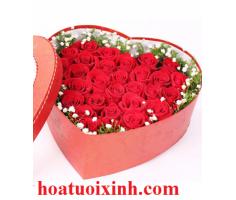 Hộp hoa hồng - HT331
