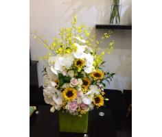 Hoa chúc mừng đẹp - HT02